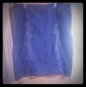 Denim Jean Skirt